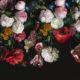 фотообои цветы на темном фоне купить. красивые цветы