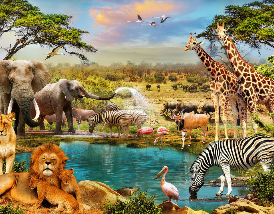 фотообои +с животными