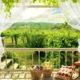 В интерьерах классическом стиле идеальны старинные изысканные балконы с лепниной и мрамором, пейзажи с видами рек или озёр; бескрайние поля и луга.