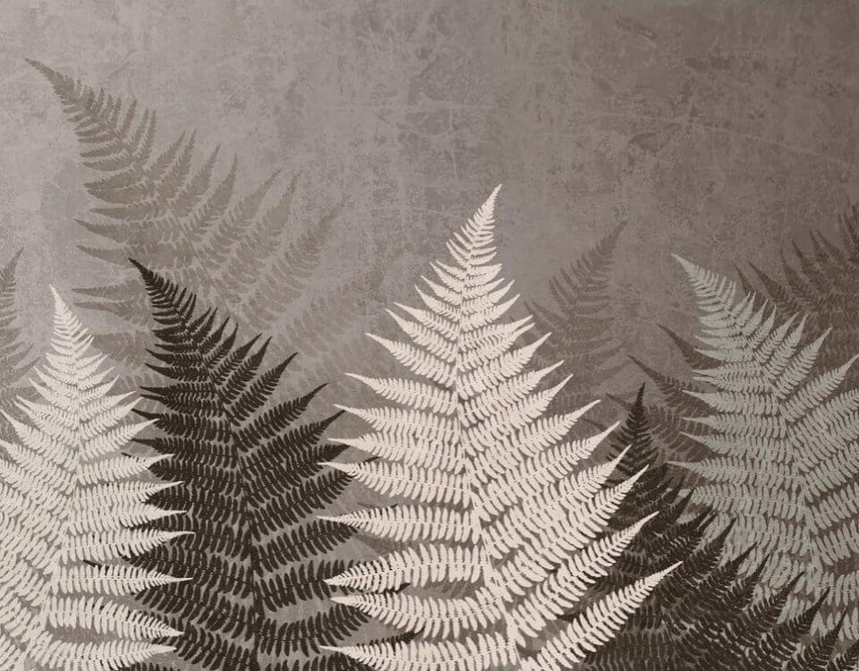 фотообои папоротник. фотообои листья папоротника