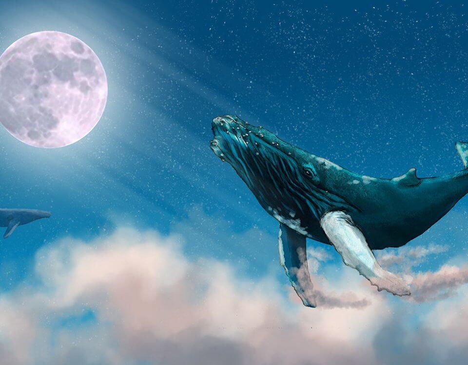 обои с арктическим китом парящим в облаках на фоне луны