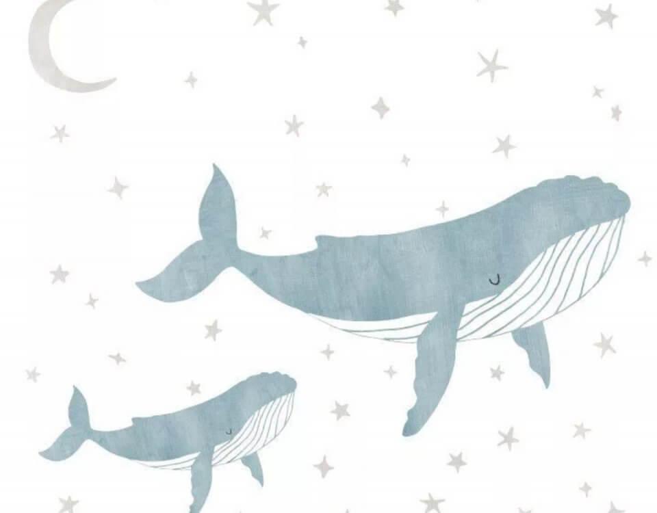 обои кит интерьер омск. Печать по вашим размерам. Сертификаты качества.