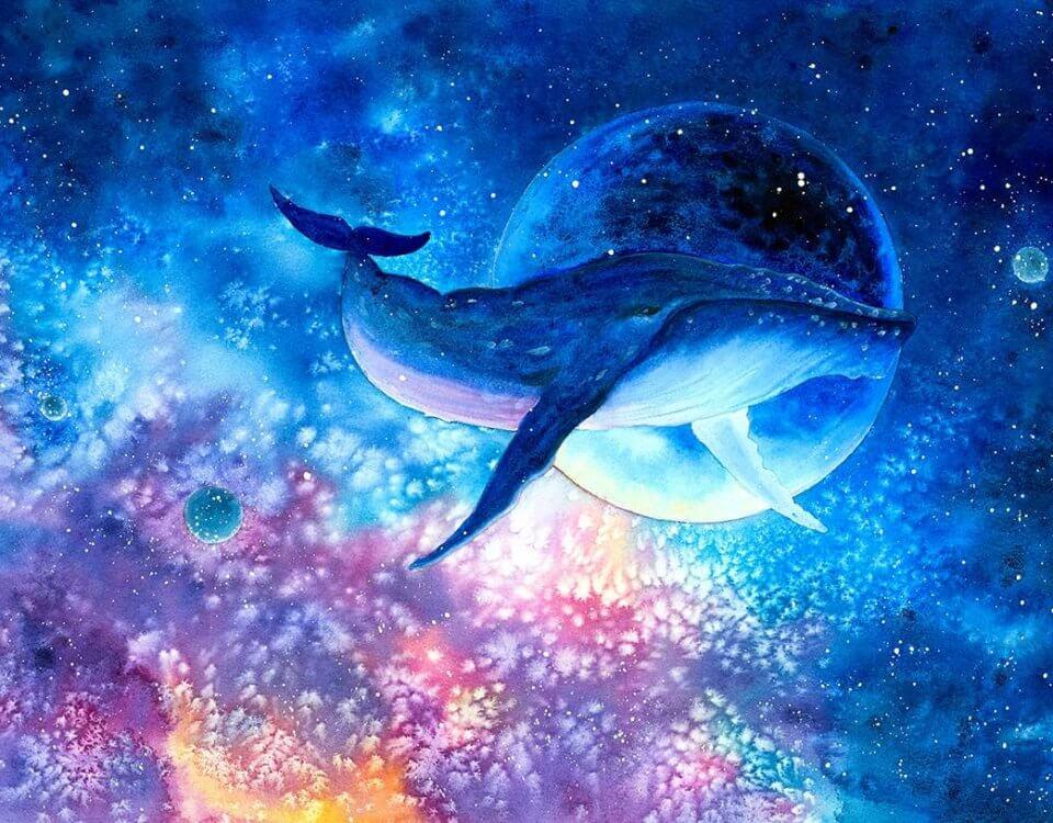 фотообои кит и луна
