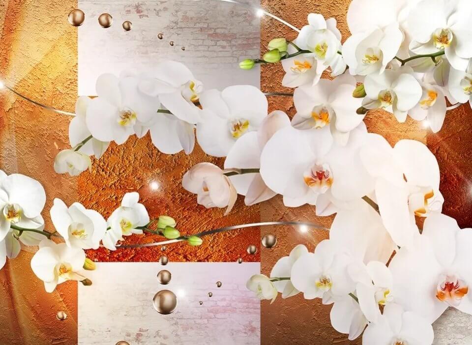 фотообои орхидея на рыжем фоне