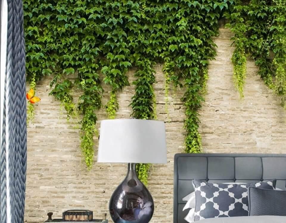 фотообои растения на стену