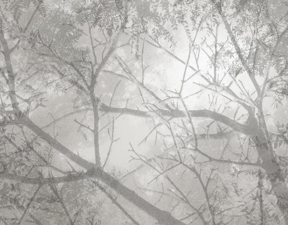 фотообои ветви деревьев серые на стену