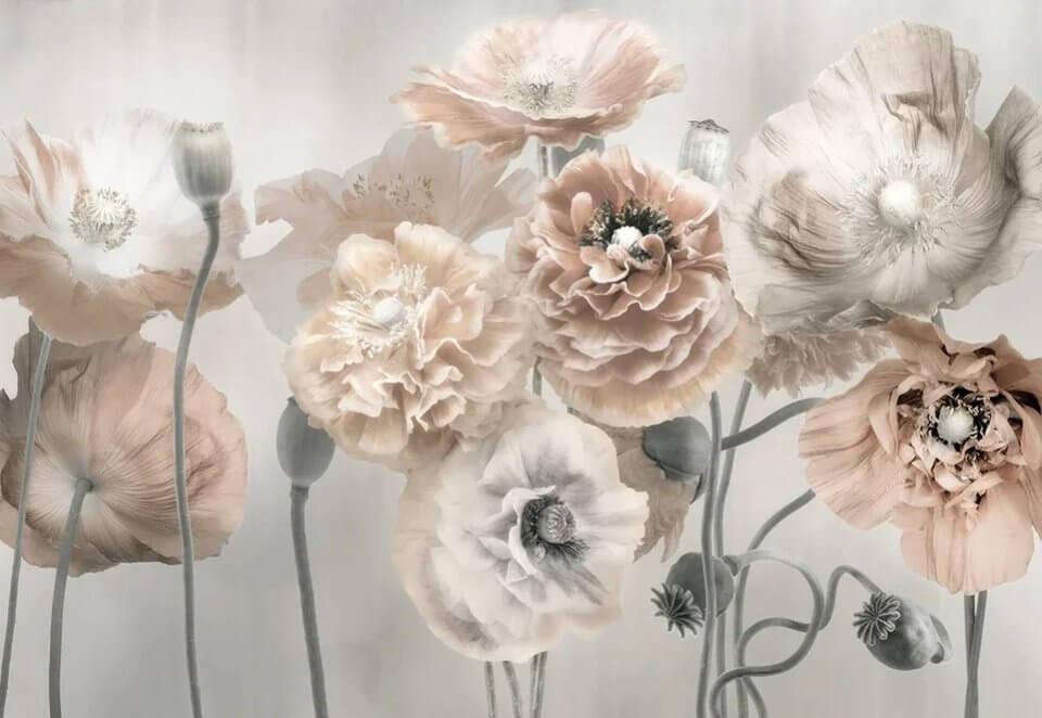 фотообои крупные цветы на светлом фоне