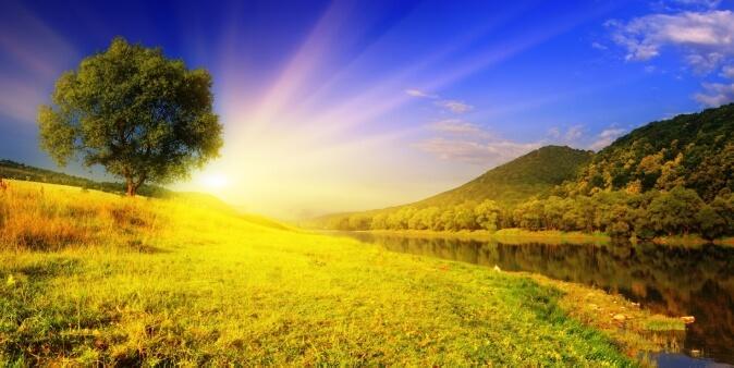 фотообои поляна с солнечными лучами